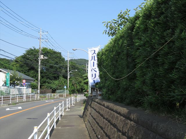 IMG_0120_R.JPG