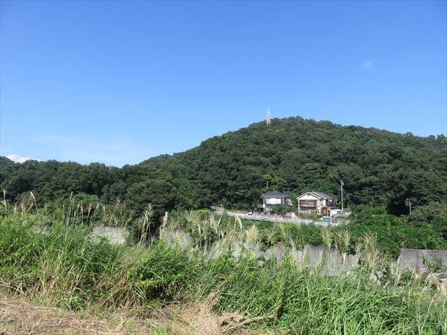 IMG_0607_R.JPG