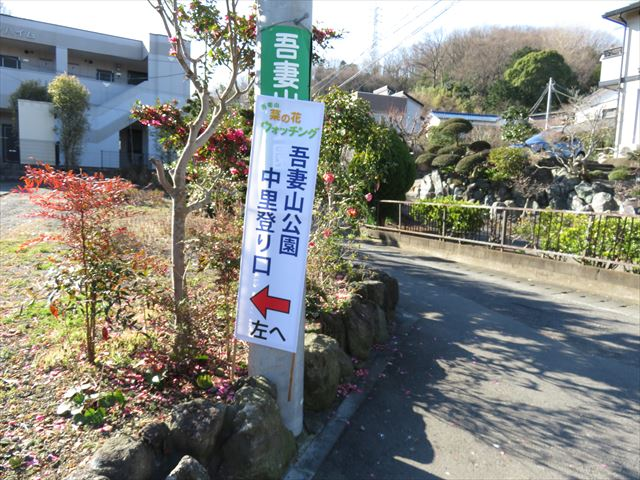 IMG_1374_R.JPG
