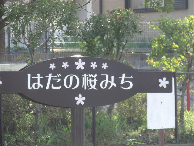 IMG_2558_R.JPG