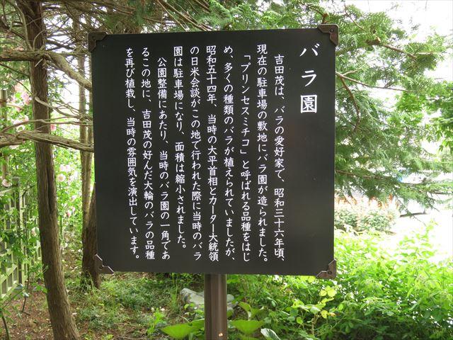 IMG_3024_R.JPG