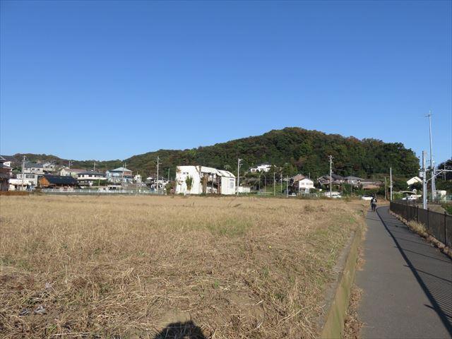 IMG_4201_R.JPG